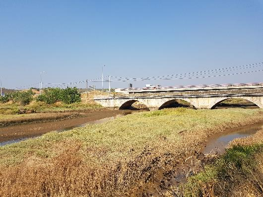 A too-narrow bridge has caused the floodplain to silt up and change, Portugal