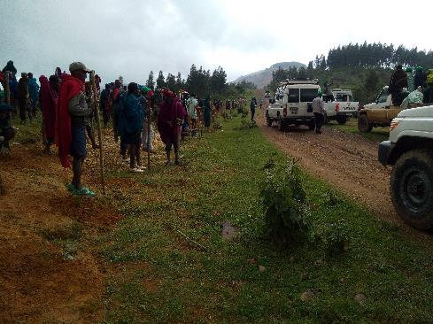 Roadside tree-planting campaign in Amhara, Ethiopia