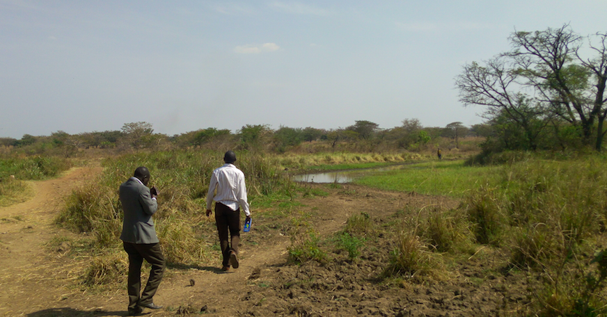 Raised road embankment and raised culverts creating local wetland in Kotomor, Agago (North Uganda) (source: Aidenvironment)