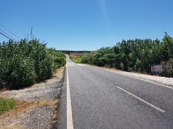 Floodway (Sado Plain, Portugal)